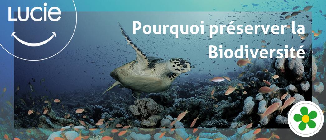 Pourquoi préserver la biodiversité ?