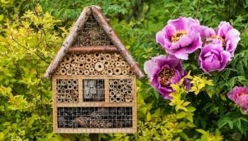 Hôtel à insectes -  référentiel sensibilisation des équipes - biodiversity progress- Agence LUCIE