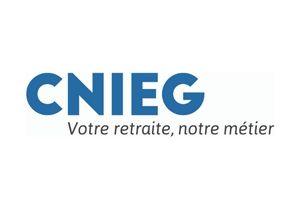 logo CNIEG - Agence LUCIE